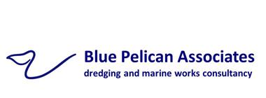 Blue Pelican Associates